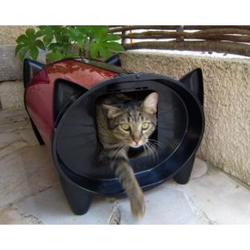 Minou6 in his KatKabin in France